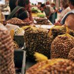 snails market lisboa