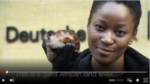 left my career for snails