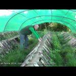 snail farm montvendre